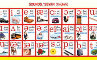 Английские звуки для детей: учим английскую транскрипцию с ребенком