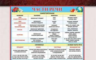 Части речи в английском языке: образование, как определить самостоятельные и служебные части речи