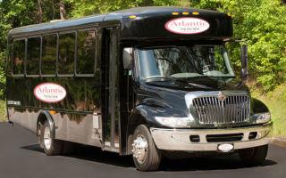Автобус или лимузин или цитаты о дружбе на английском