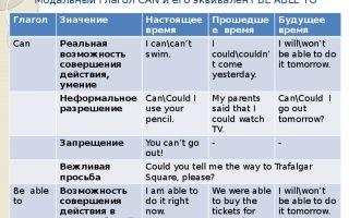 Модальный глагол can / could: формы глагола, правила употребления в английском языке