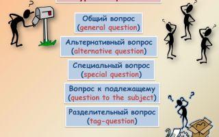Питальні речення в англійській мові | популярні типи питальних речень в англійській мові