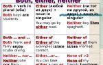Употребление either, neither и both: отличия и правила использования в английском языке